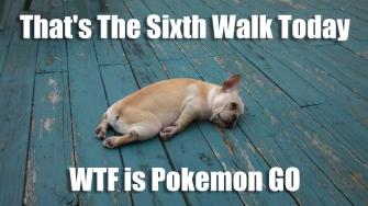 PokemonGO_Funny_Meme