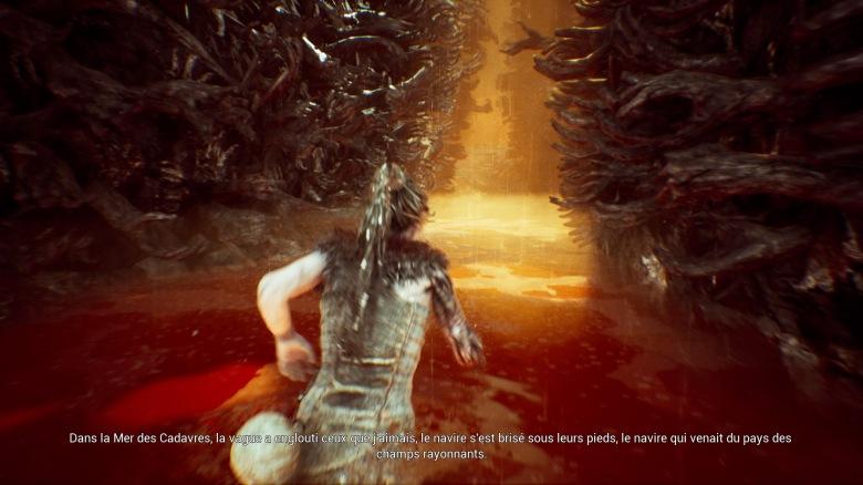 Hellblade: Senua's Sacrifice™_20170818191401