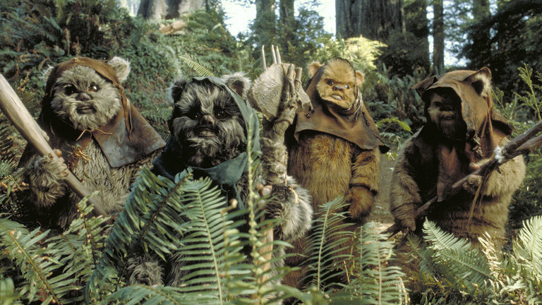TOP 10 Secret Star Wars My Geek Actu Ewoks.jpg