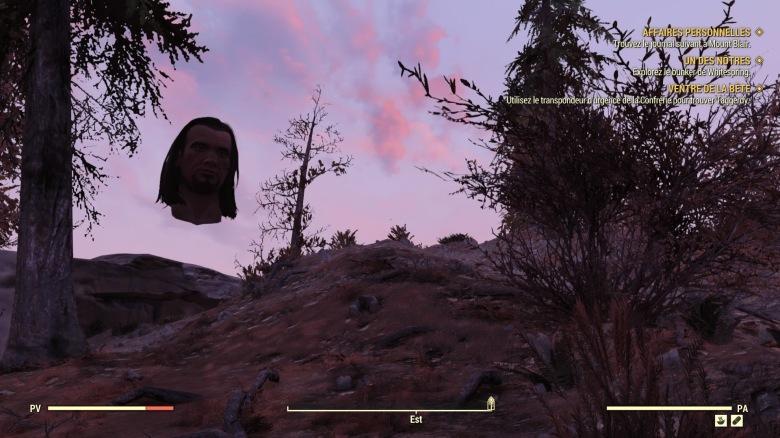 Fallout 76_20181129132256