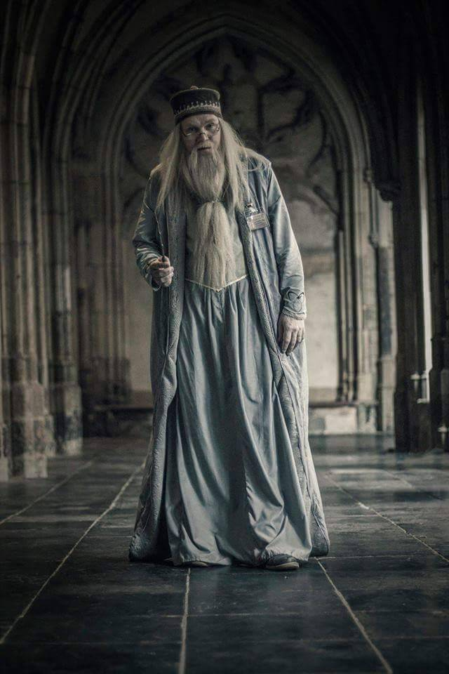 top cosplay hp - dumbledore